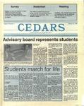 Cedars, January 21, 1988