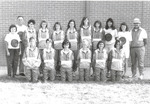 1991 Women's Cross Country Team by Cedarville College