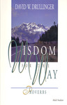 Wisdom for the Way: Proverbs by David W. Drullinger