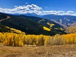 Autumn Splendor by Blythe W. Anderson