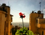 Beirut Lebanon by Silas Estefan La Borde