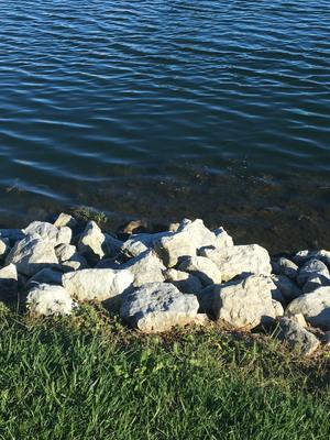 Peace Like a River.... or Cedar Lake