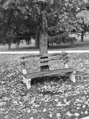 Prayer Bench