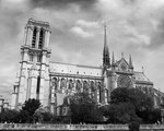 Notre Dame by Charliene A. Boyle