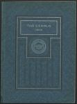 Curious about Cedarville 100 Years Ago?