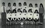 1988-1989 Women's Volleyball Team